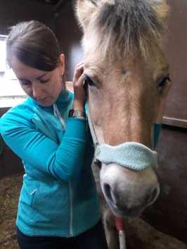 Lissie (H3Massage) & Zigor